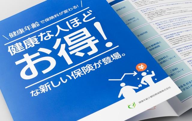 営業パンフレット制作事例-02<br />【保険商品】