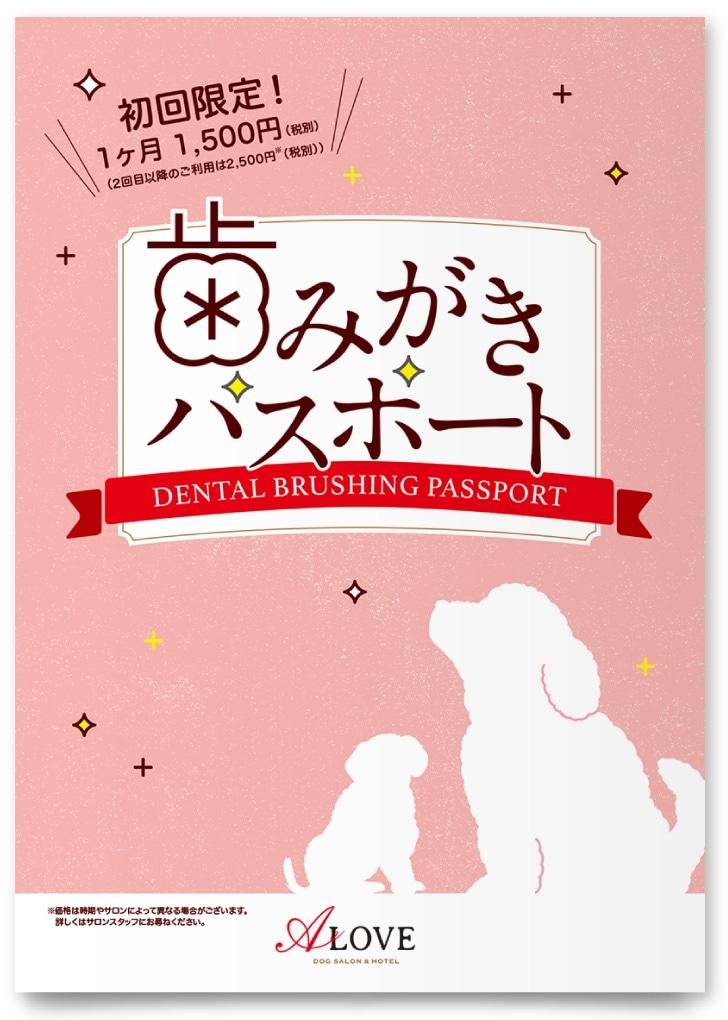 株式会社ニチイ学館様・歯みがきパスポート